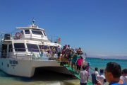 Catamaran Isla Tortuga