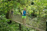 Hanging Bridge Tour Costa Rica