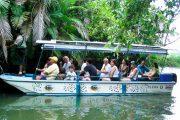 Mangrove Boat Tour Manuel Antonio