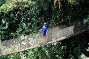Rainmaker Hanging Bridge Puntarenas